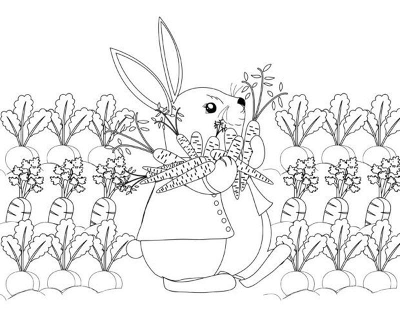 Tranh tô màu vườn cà rốt