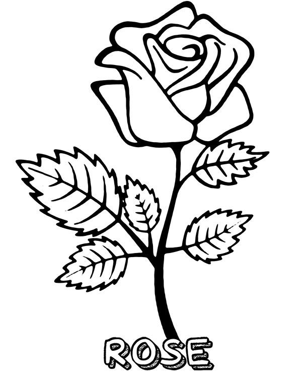 Tranh vẽ tô màu hoa hồng cực đẹp cho bé