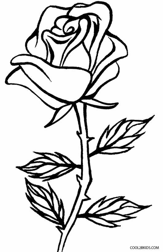 Tranh vẽ tô màu hoa hồng đơn giản đẹp cho bé